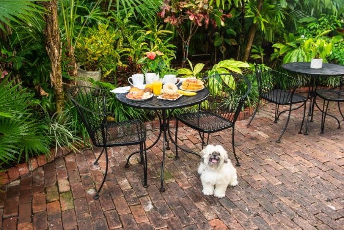 Pet Friendly Key West Hotel
