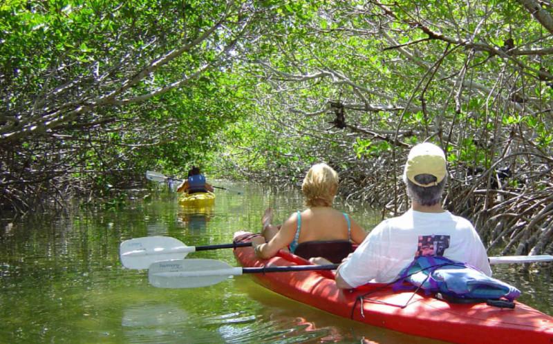 Key West Water Activities, Kayaking
