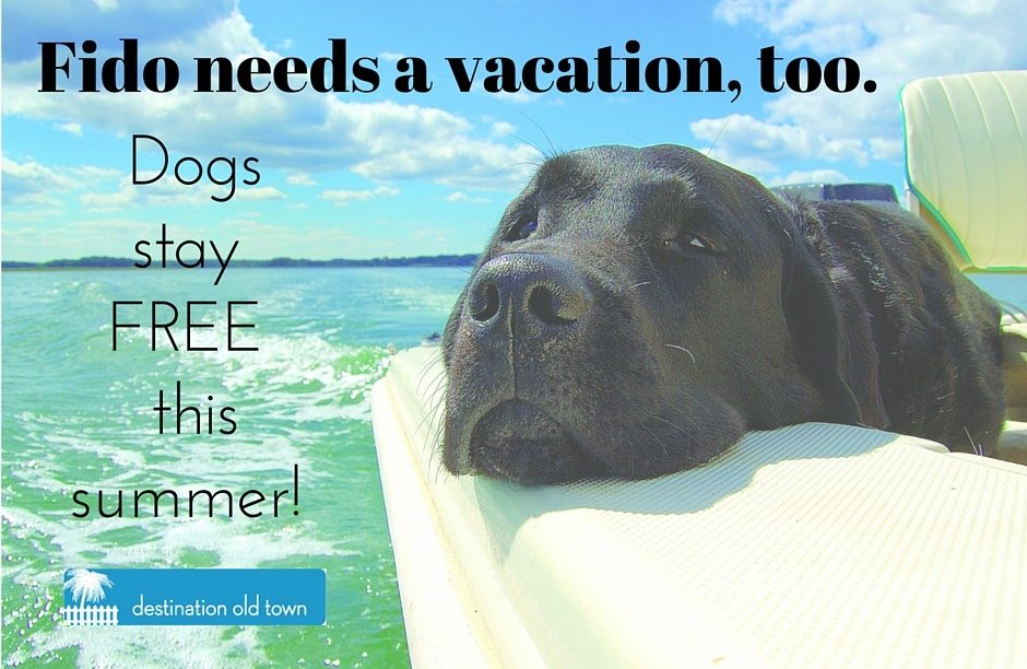 Pets stay free